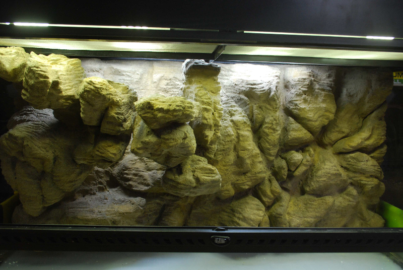 Fabricant de d cor terrarium terrarien aquaterrarium d sertique tropicale fausse roche - Decor fond terrarium desertique ...